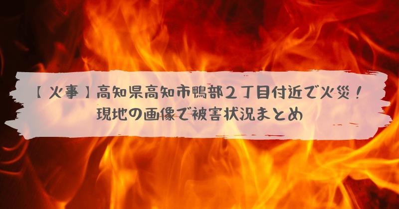 市 どこ 高知 火事